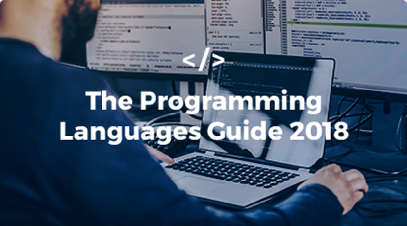 The SA Programming Languages Guide 2018